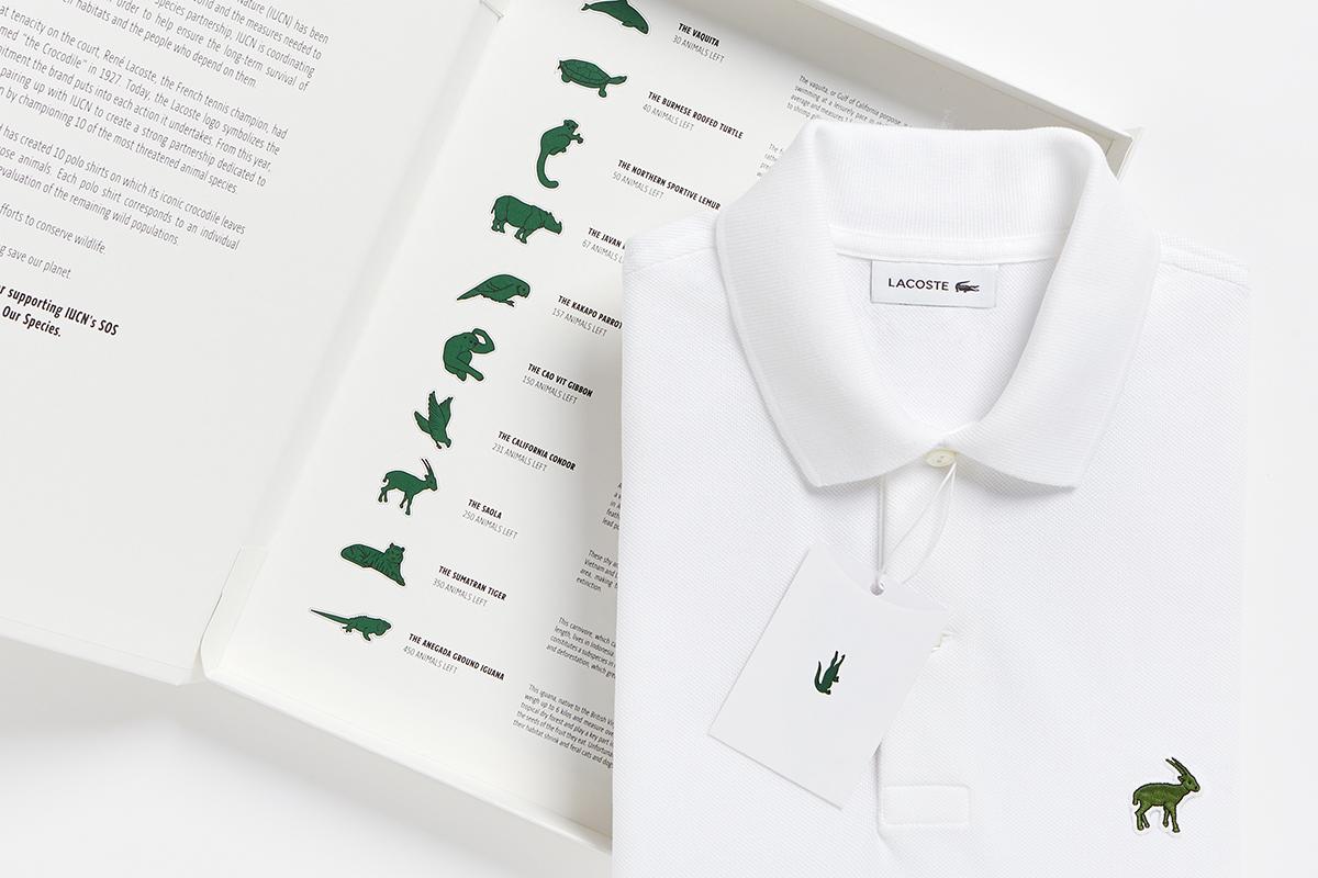 Sustainable Fashion: Lacoste